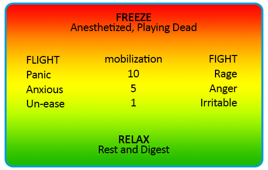 Freeze Relax chart
